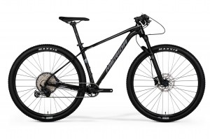 MERIDA BIG.NINE LIMITED 2020